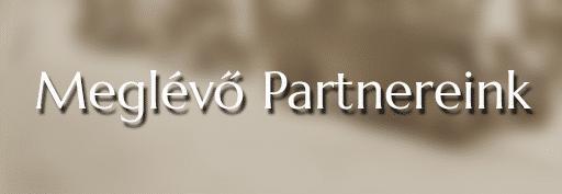 Meglévő partnereink